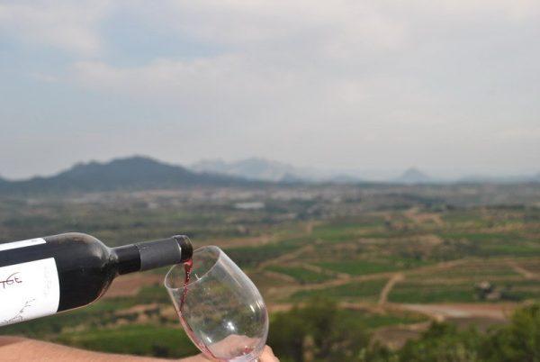 Tast de vins Terra Alta