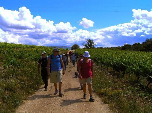 Excursió Priorat amb tast de vins